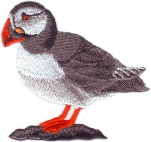 Newfoundland Atlantic Puffin