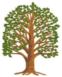 Family Tree (Square Hoop)