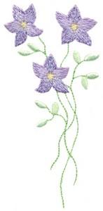 Violet Stems