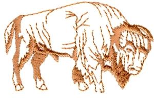 Bison outline