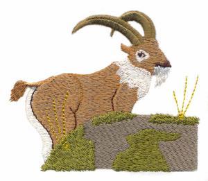 Goat Behind Rock