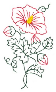Hibiscus Flower Outline #3