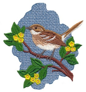 Oahu Elepaio Flycatcher (Hawaiian Bird)