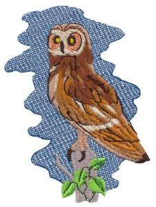 Pueo Owl (Hawaiian)