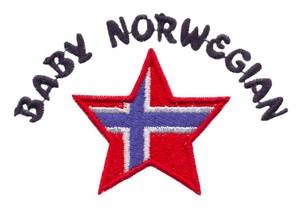 Baby Norwegian