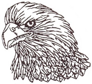Eagle Outline (Micro-embroidery)