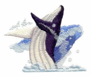 Breeching Whale