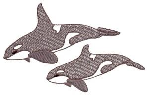 Killer Whales/Orca ( Trapunto )