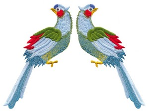 Two Colourful Birds (Square Hoop)