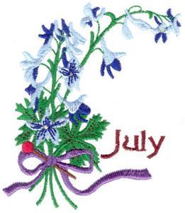 July Larkspur