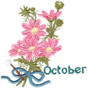 October Cosmos
