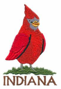 Indiana State Bird - Cardinal
