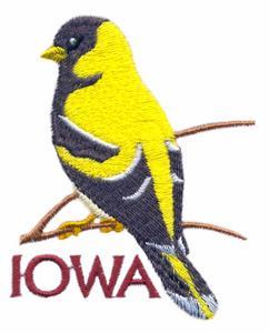 Iowa State Bird - Eastern Goldfinch