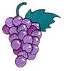 Grapes (larger)