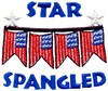 Star Spangled Banner (Micro-embroidery)