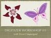 Digitizer Workshop 05